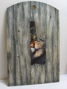 Risultati immagini per paintings on wood pallets Arte Pallet, Wood Pallet Art, Pallet Painting, Tole Painting, Painting On Wood, Wood Pallets, Fence Art, Driftwood Art, Animal Paintings