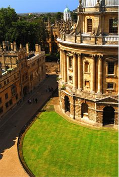 University of Oxford North American Office.. Supporting Oxford University's WildCRU program that researches and protects big cats in Africa.