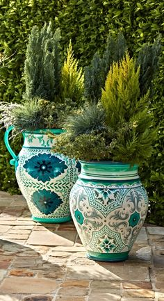 House Plant Maintenance Tips Inspired By The Shades Of The Sea, Our Exquisitely Detailed Serino Painted Planter With Handles Brings A Burst Of Cool Color To Your Sunroom, Patio Or Garden. Container Plants, Container Gardening, Gardening Tips, Pot Jardin, Backyard, Patio, Garden Ornaments, Types Of Plants, Garden Pots