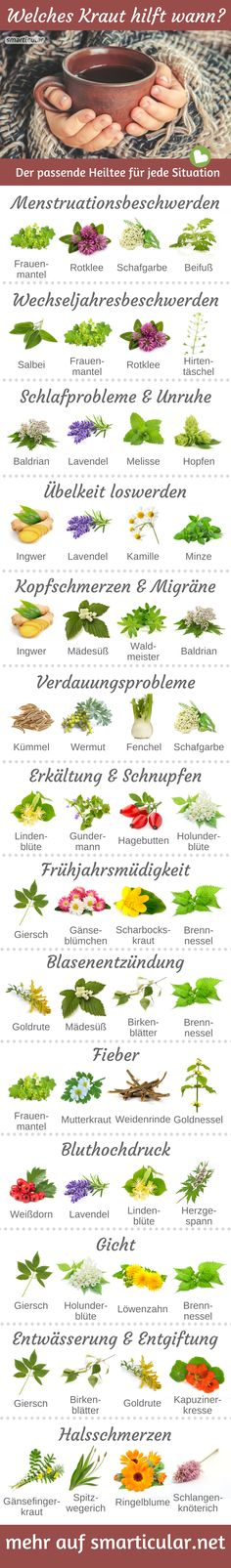 Which herb helps when? 13 Suffering and the right healing tea- Welches Kraut hilft wann? 13 Leiden und der passende Heiltee For almost every ailment, there is a healing tea that can provide you with relief without tablets and helps you to feel better. Herbal Remedies, Natural Remedies, Leiden, Bebidas Detox, Good To Know, How To Stay Healthy, Natural Health, Health Tips, Herbalism