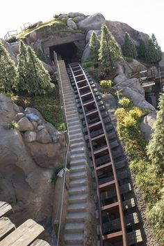 Photos of the big drop on the Seven Dwarfs Mine Train ride!