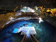 Devils Den, in Williston FL.   Devil's Den is the most unusual geological formation I have ever seen. A collapsed sinkhole [a chimney provides sunlight down to the sinkhole lake], where you can snorkel and scuba dive. Breathtaking. About 45 minutes from Gainesville.  right near rainbow river FL