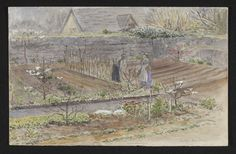 drawing | Beatrix Potter | V&A Search the Collections