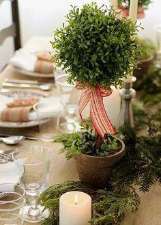 ツリーがない時は、身近なグリーンを代用して。赤と白のリボンをあしらえば、それだけでクリスマス仕様に♪