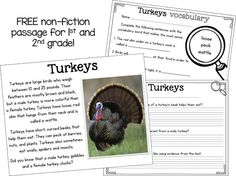 FREE close read passage about turkeys! Perfect for and graders around Th… FREE close read passage about turkeys! Perfect for and graders around Thanksgiving Close Reading, Guided Reading, Teaching Reading, Learning, Teaching Ideas, 2nd Grade Ela, First Grade Reading, Second Grade, Grade 2