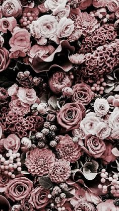 ideas for vintage flowers photography wallpaper backgrounds pink roses Watch Wallpaper, Flower Phone Wallpaper, Pink Wallpaper, Nature Wallpaper, Trendy Wallpaper, Wallpaper Plants, Colorful Wallpaper, Flower Lockscreen, Iphone Wallpaper Vintage Hipster