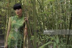 Stock-Foto : Young woman wearing Chinese traditional dress standing in bamboo forest