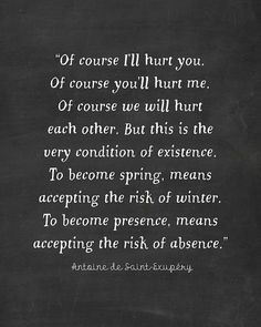 Of Course I'll Hurt You - The Little Prince Quote - Antoine - Exupery - De Saint…