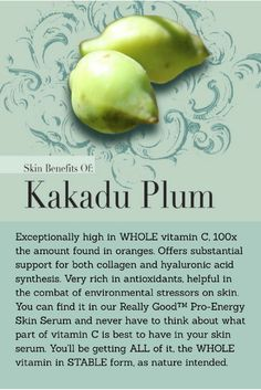 #vitaminCserum #ecobeauty #freshbeauty #kakaduplum #nontoxicskincare #greenbeauty #indieskincare #indiebeauty #DirectToConsumer