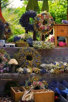 Piacok, hangulatok – a káptalantóti Liliomkert | Életszépítők Floral Wreath, Wreaths, Halloween, Home Decor, Decoration Home, Room Decor, Halloween Labels, Bouquet, Spooky Halloween
