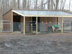 Barn Goat Shelter in Winter | Nice small, lean-to horse barn/shelter
