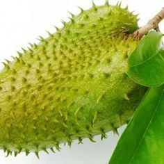 This One Fruit Kills Malignant Cells of 12 Different Types of Cancer Different Types Of Cancer, Cancer Fighting Foods, Prostate Cancer, Exotic Fruit, Detox Recipes, Healthy Mind, Home Remedies, Good To Know, Natural Health