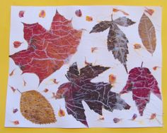 The Chocolate Muffin Tree: Leaf and Flower Petal Tissue Collage