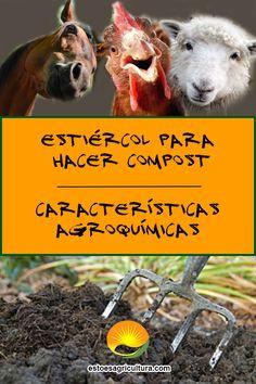 El estiércol es un desecho agrícola estupendo para realizar compost de calidad. Su aplicación aporta al suelo macro y micronutrientes esenciales para un buen desarrollo de todo tipo de plantas, en sus diferentes etapas fenológicas. Compost, Organic Matter, Microorganisms, Composters