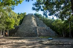 The main structure called Nohoch Mul at the archaeological site of Coba. Early bird bonus of Your Private Tour: nobody else there and you may claim to be the first on top! Cancun Wedding, Destination Wedding, Swimming With Whale Sharks, Mayan Ruins, Tour Operator, Early Bird, Archaeological Site, Riviera Maya, Merida