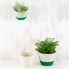 Add some greenery to your home with these unique planters! They can be placed on a windowsill, countertop, shelf, or even hang against the wall. Cotton Rope, Window Sill, Greenery, Planter Pots, Basket, Countertop, Farmers, Canning, South Africa