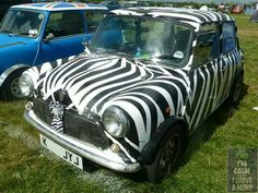 A Zebra Themed Mini! Question is... White with Black Stripes or Black with White Stripes???