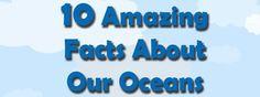 Ocean Facts Infographic – Scuba Diving