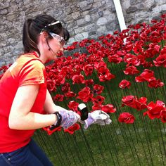 "Hannah Kokoschka's sister, Emma D'Arcey planting poppies at the Tower of London August 2014 as part of Paul Cummins amazing installation ""Blood Swept Land and Seas of Red."""
