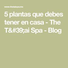 5 plantas que debes tener en casa - The T'ai Spa - Blog