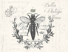 Botanical Print French Bee | Botanical Prints, Bees and French