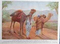 Afghan Camel Boys  1921 Color print art   Arabian Camels  Rare 1921 Magazine Art