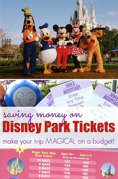 Disney world park coupons