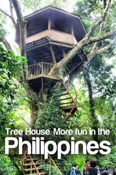 Tree House #Architecture. More Fun In The Philippines