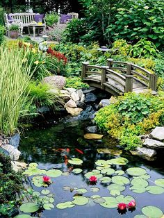 A Bench, Chair, And Table Offer A Quiet Alcove Overlooking The Expansive  Lily Pond.    An Arched Bridge Takes Garden Visitors Over ...