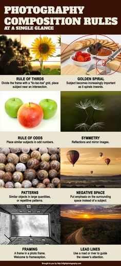 The common photography composition rules to spice up your photos. #photographytips #tipsandtricks #photographyclass