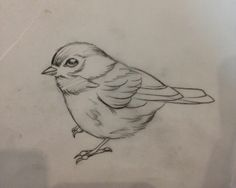 Go to Charcoal Drawing Course - Pencil Art Drawings, Bird Drawings, Love Drawings, Easy Drawings, Animal Drawings, Drawing Birds, Sweet Drawings, Drawing Sketches, Art Sketches