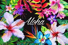 Aloha - tropical flowers kit. by RosaPompelmo on @creativemarket