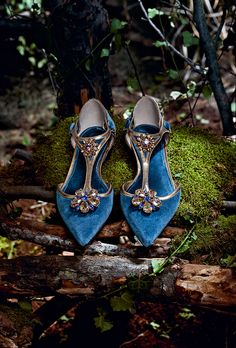 Dolce & Gabbana Woman's Accessories - Collection Fall Winter 2014 2015