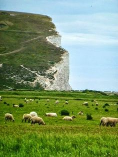 Birling Gap, East Sussex, England