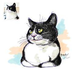 This is special for @feniafelicia lovely cat #fettekatze #bigcat #leechat #cat #katze #kucing #miau #catlover  #doodles #doodle #doodling #sketsa #sketch #gambar #drawing #고향이 #고향이좋다 #masbe #mas_be #masbambi #bambibambanggunawan #karakterunyu #Unyu2 #unyu_korea #cutedrawing #cute