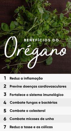 O orégano é uma erva aromática muito utilizada como tempero na cozinha, especialmente de massas, saladas e molhos, e que traz benefícios para a saúde como ser antioxidante e anti-inflamatório, ajudando a prevenir e combater doenças.