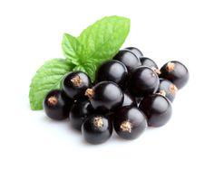 Le bacche di ribes nero (o Ribes Nigrum) sono in particolare la parte della pianta che offre il più alto potere antiossidante. Sono ricchissime di vitamina C, in una forma più stabile di quella degli agrumi.