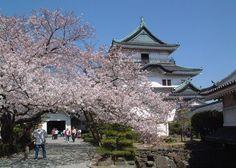 Wakayama Castle, Wakayama, Japan. I love this castle! Went there often!