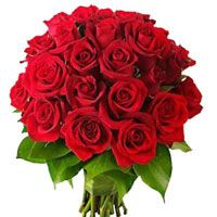 we are provide fresh birthday online flowers delivery `in bangalore cakes delivery in banglore for all location If you want more information so call us -9212630303 Website ; http://www.bengaluruflorists.com/pink-roses.htm