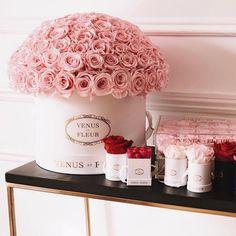 house flower boxes 584553226624031051 - Venus et Fleur ♥ Source by melanielegeroman Beautiful Roses, Beautiful Flowers, Venus Roses, Million Roses, Box Roses, Glitter Roses, Luxury Flowers, Cute Home Decor, Pink Love