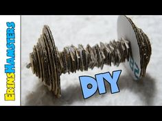 DIY DUMBELL TOY FOR SMALL ANIMALS - YouTube