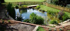 Aqua Landscape Design - providing pond design, water garden design, natural swimming ponds, pond landscaping and commercial water features