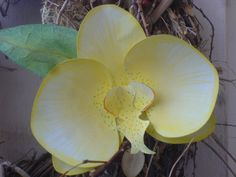 Papier Orchidee -gelb-