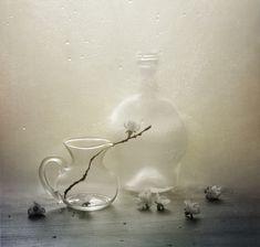 35PHOTO - Елена - Без названия
