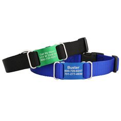 Make a splash with a Color Splash ScruffTag Personalized Dog Collar! Pick your perfect nylon & nameplate color. Custom made & engraved in the USA! Buy now!
