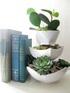 Succulent Garden Planter: For this particular project, I used the Gorilla Epoxy. I glued clear glasses in between dollar store ceramic bowls.  I decided not to spray paint the glasses because I knew they would not be visible once the plants were in.  I used different size bowls with an opening wide enough to insert plants.