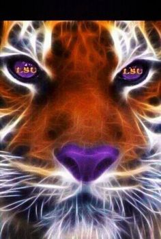 LSU TIGERS ARE THE BEST! If you say otherwise, SHAME ON YOU!