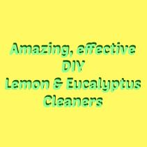 Here is my promised blog post on cleaners that are great for grime & scum cleaners with lemon & eucalyptus essential oils. DIY lemon eucalyptus deodorizing, disinfecting, sanitizing, Scum & grime cutting cleaners