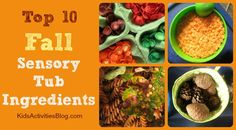 Ideas of things you can use with your kids in a sensory tub