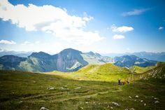 L'été aux Paccots ! (Fribourg, Suisse) ©CreationPhoto_AurélieFelli